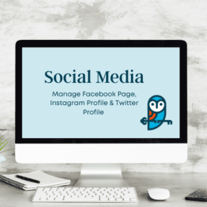 Gifted Owl social media product page icon